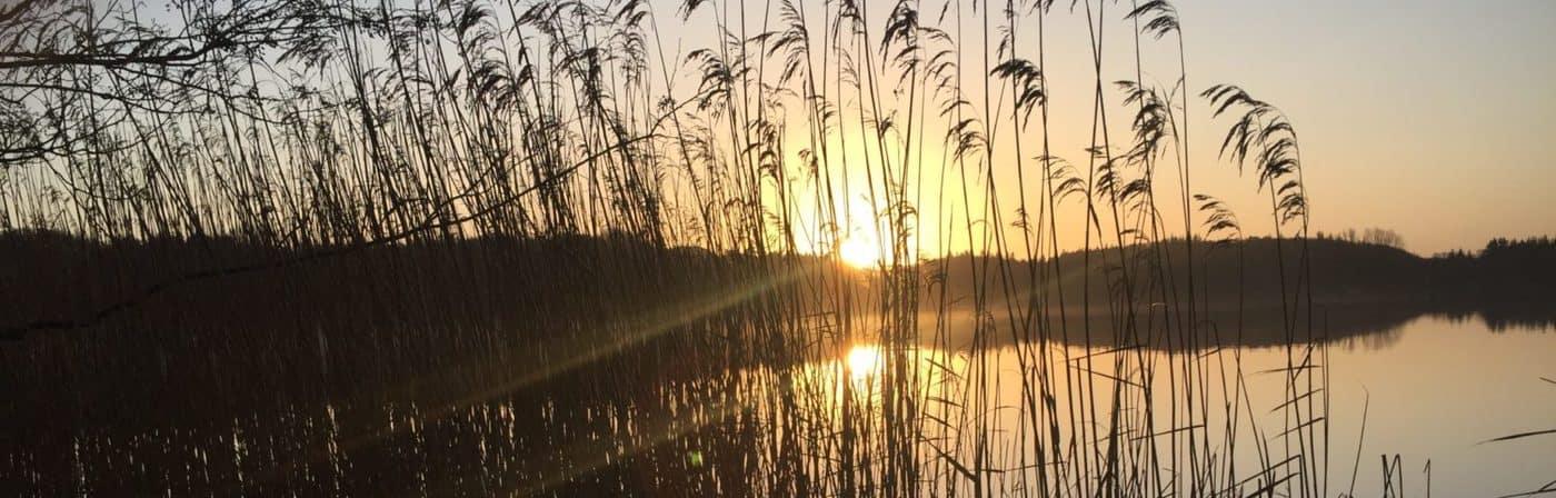 Idstedter See